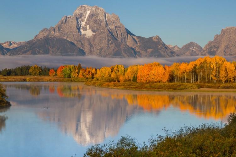 Yellowstone National Park Fall Foliage