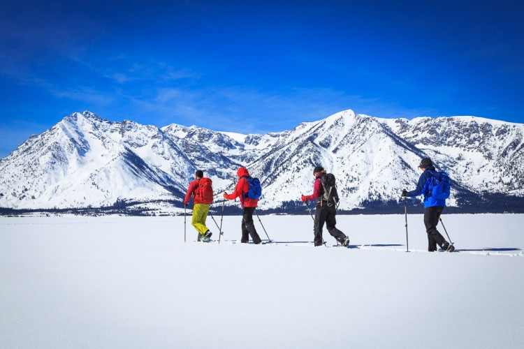 Snowshoe Tour in Grand Teton National Park