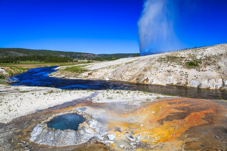 Geyser in Yellowstone National Park.