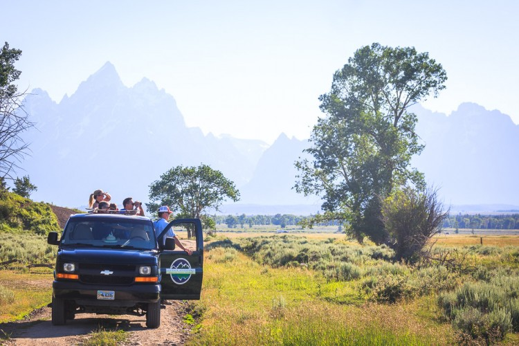 Grand Teton National Park Wildlife Tour