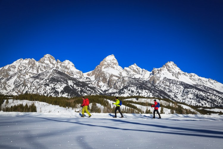 Cross Country Skiing in Grand Teton National Park