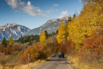 Explore Fall in Grand Teton and Yellowstone National Parks!