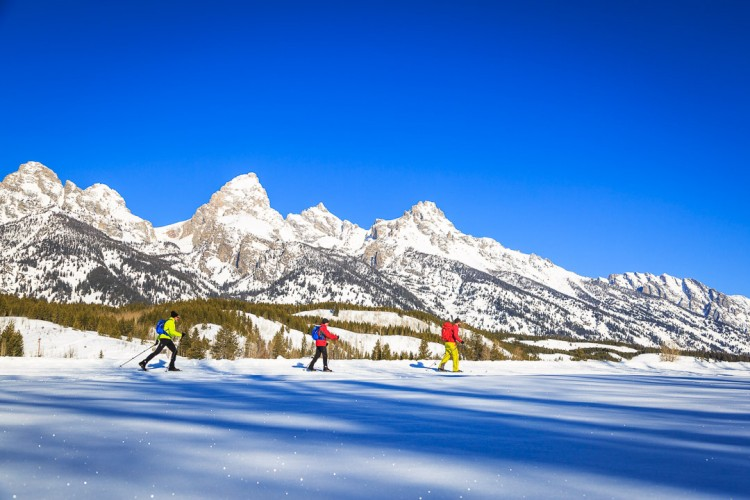 Nordic Skiing in Grand Teton National Park with Jackson Hole Ecotour Adventures.