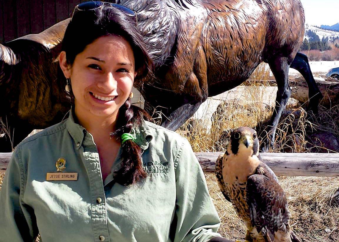 Wildlife Biology university gide