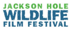 Jackson Hole Wildlife Film Approved!