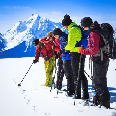 Wildlife and Snowshoeing Tour in Jackson Hole, Wyoming