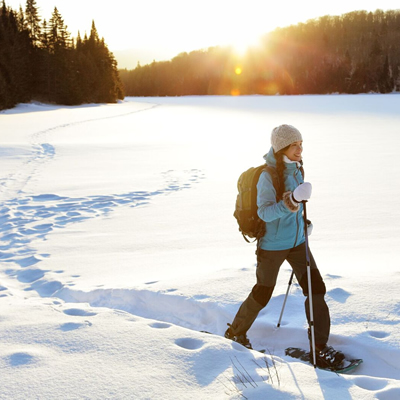 Full Day Snowshoeing Tour